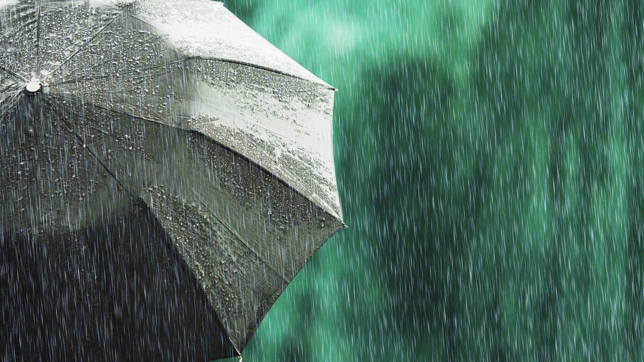 Open black umbrella in wet weather. Autumn rain. Deep sorrow. Wet umbrella against backdrop of street. Sad mood. Raining in city. Heavy rain on summer green background. Feel sorrow and sadness