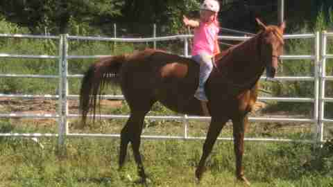 Equine therapy for ADHD - a young girl riding a horse.
