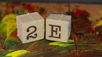 2E (twice exceptional) stamp blocks on primary color paints