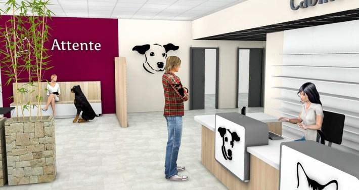 Agencement par Adeco Breizh d'un cabinet veterinaire