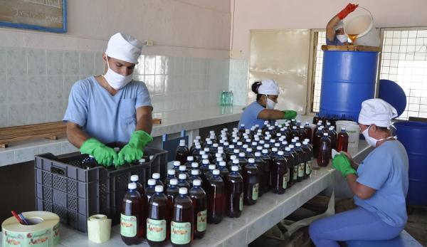 Minindustrias camagüeyanas por el autoabastecimiento alimentario