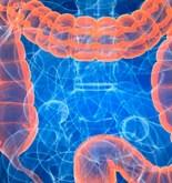 """""""Tras los antibióticos, la actividad metabólica de la flora intestinal queda dañada"""" 11"""
