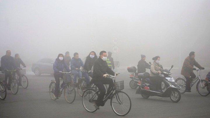 """""""La contaminación es, probadamente, neurotóxica en humanos"""" 1"""