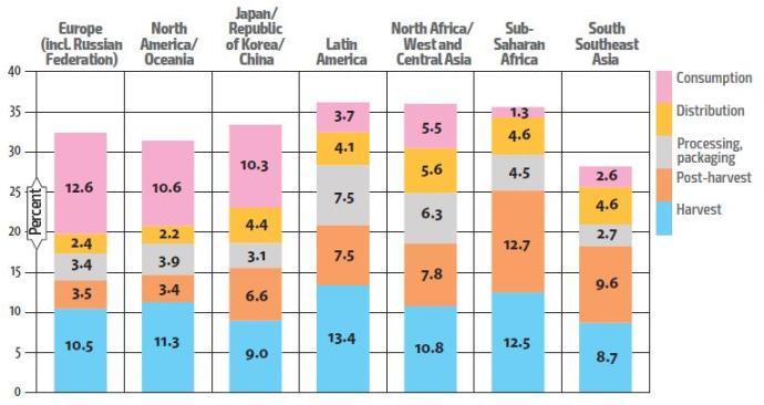 Pérdidas de frutas y hortalizas (en % de la producción total) desde la producción hasta el consumo en las distintas áreas geográficas del mundo (Fuente: FAO, 2017)