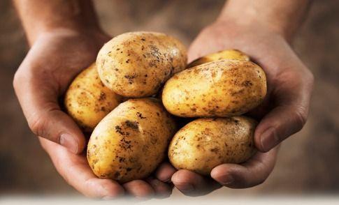 El Almidón de la patata y el Cáncer