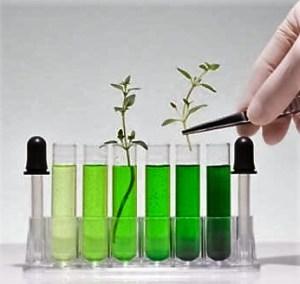 Investigación en Biotecnología y Genética