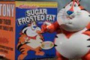 Los cereales engordan
