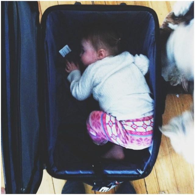 A Denver Home Companion | going on a trip