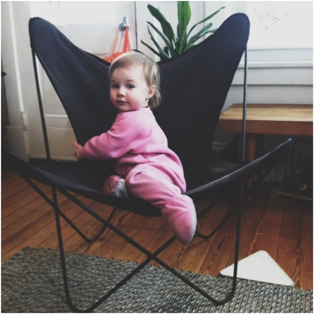 A Denver Home Companion | butterfly chairs