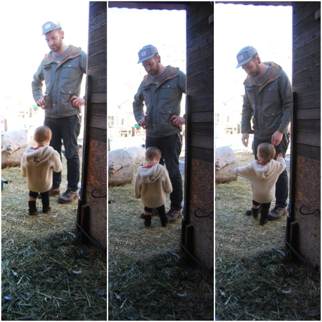 A Denver Home Companion   father and child