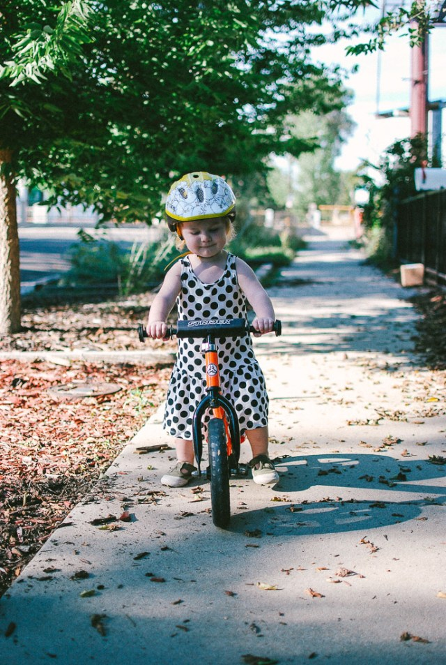 A Denver Home Companion | strider bike