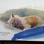 Ziggy watercolour