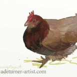 iPad chicken