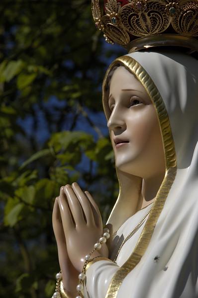 Frases Sobre A Intercessão De Nossa Senhora Ide E Anunciai