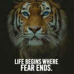 Leven begint waar angst eindigt