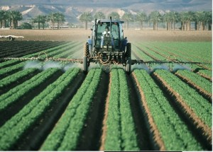 Pesticide Exposure May Increase the Risk of ADHD
