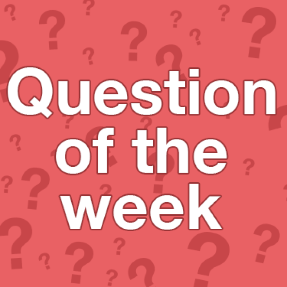 Image result for question of the week images