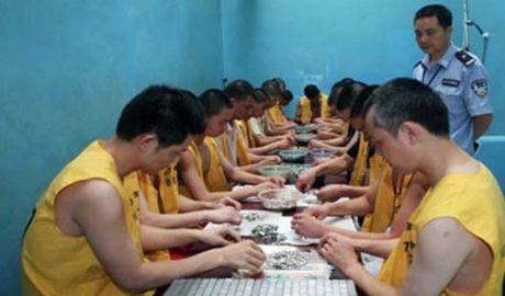 中国看守所:出口大蒜之源
