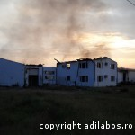 incendiu fabrica de ciocolata Beius 5