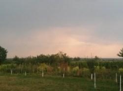 nori de ploaie peste Tinca