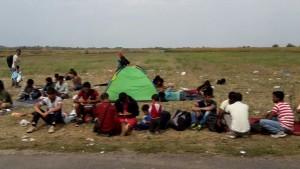 refugiati cu cort