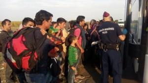 politie refugiati