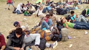 multi refugiati