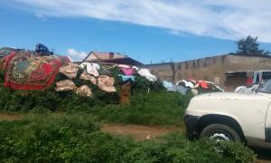 rufe la uscat Antananarivo Madagascar 2