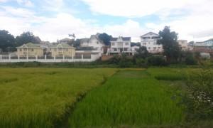 orez si case Antananarivo