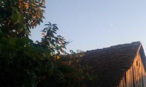 luna si casa (1)