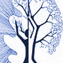 giornata albero genealogico 2016