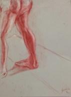 F. Collins, Anatomical Detail, Drawing Fundamentals, MassArt Summer Intensives, 2013