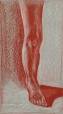 L. Ancona, Anatomical Detail, Drawing Fundamentals, MassArt Summer Intensives, 2013