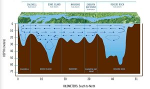 sub-surface currents of Lake George