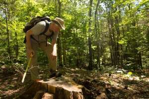 peter-bauer-examines-a-stump-along-a-newly-constructed-community-connector-trail