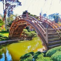 Winter at the Huntington Library Gardens
