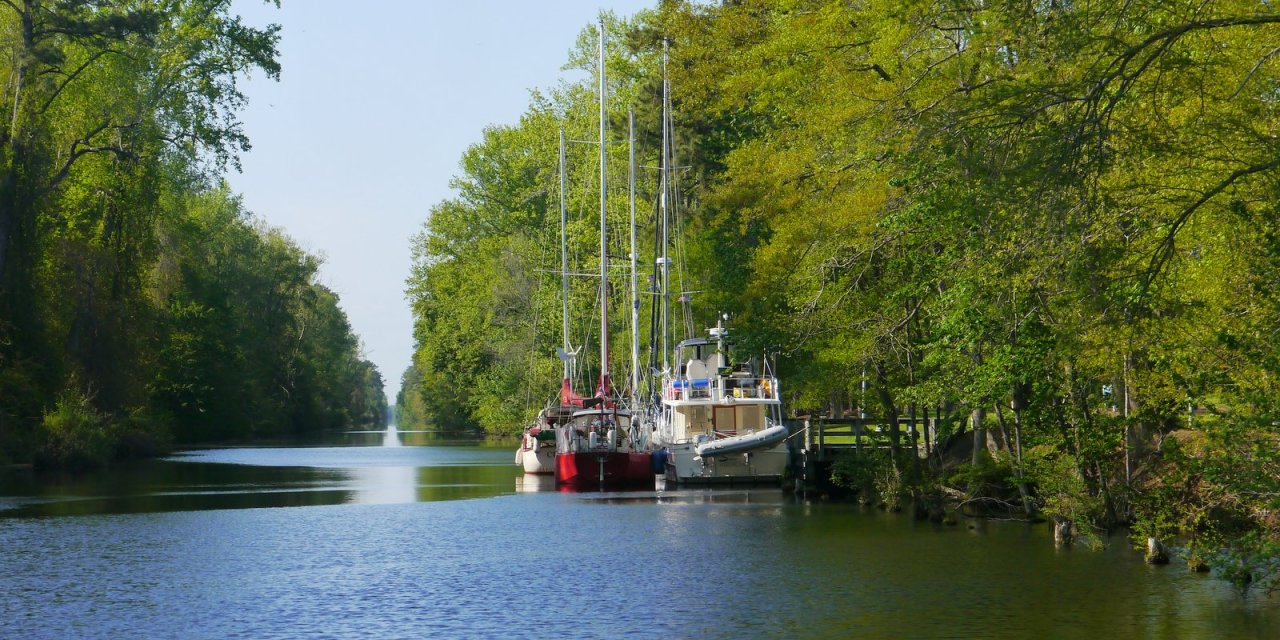 The Not-at-all Dismal Swamp