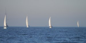 Sailboats entering NY harbour early in the morning