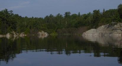 Rocks, trees,