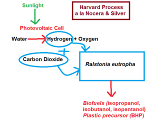 Photovoltaic Conversion of CO2 and Hydrogen to BioFuels