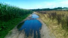 Regenval maakt landweg bij Uddel moeilijke begaanbaar
