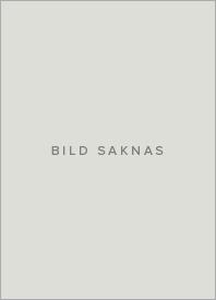 Fortunas klädnader : lycka, olycka och risk i det tidigmoderna Sverige