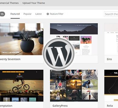 WordPress Training Institute in Delhi