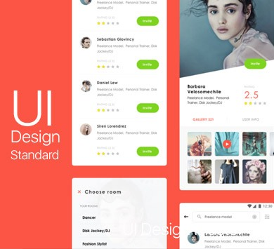 UI Design Standard Course