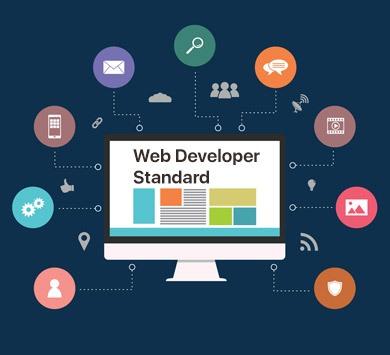 Web Developer Standard Course