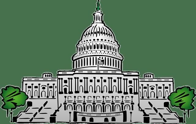 Neurolingüística y Política