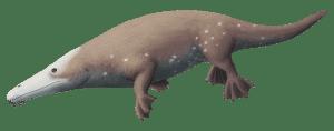 Maiacetus