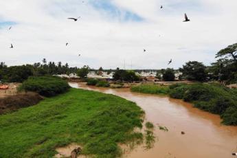 Silvia Romano a Bulo Fulay, Harardhere e Janale: i tre covi somali