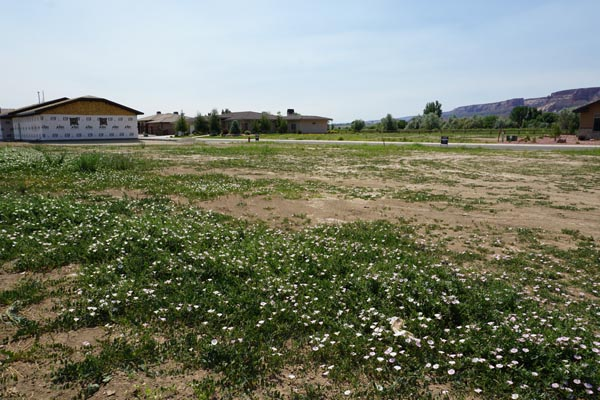 vacant lot at 1401 Niblick Way Fruita Colorado