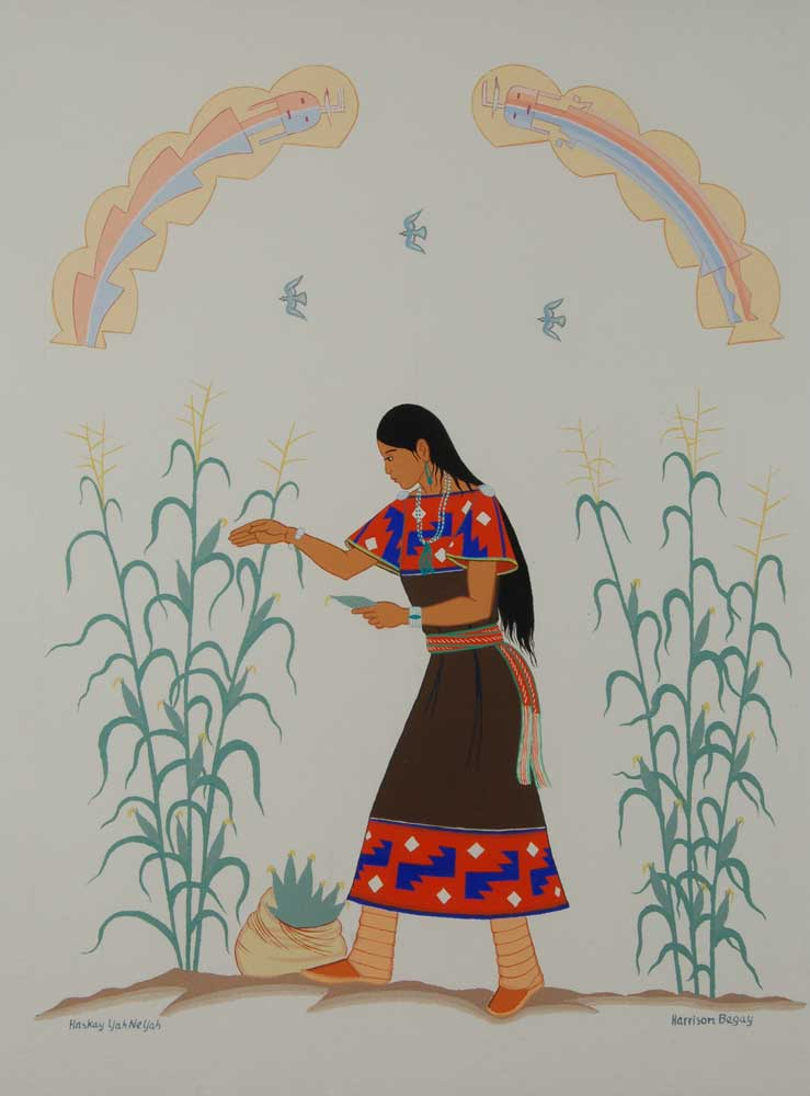 Young Din Navajo Girl Gathering Corn By Harrison Begay